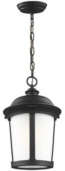 Lara 1-Light Outdoor Hanging Lantern Charlton Home Bulb Included: No, Finish: Antique Bronze