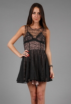 Camilla And Marc Courtesy Frock in Black Lace/Nude -