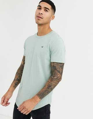 Hollister icon logo curved hem t-shirt in dark green