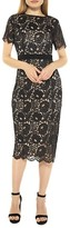 Thumbnail for your product : Alexia Admor Delora Lace Sheath Dress