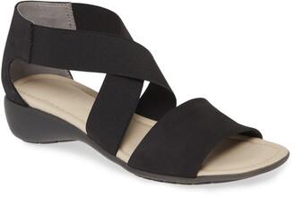 The Flexx Sunglass Too Sandal