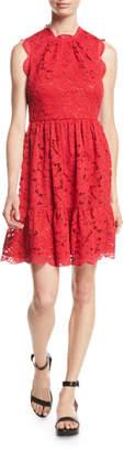 Kate Spade Poppy Field Lace Dress W/ Scalloped Trim
