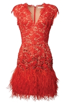 Matthew Williamson Red Lacquer Lace Feather Dress
