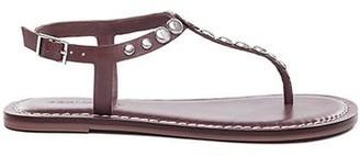 Bernardo Mojo Brown Studded Sandal