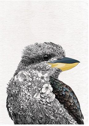 Maxwell & Williams Marini Ferlazzo Birds Cotton Tea Towel 50 x 70cm Kookaburra