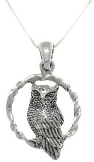 """Carolina Glamour Collection Wise Owl Bird on Round Swing Sterling Silver Pendant Necklace 18"""""""