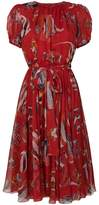 Dolce & Gabbana fish print dress