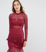 True Decadence Tall All Over Mesh Skater Dress With Ruffle Hem