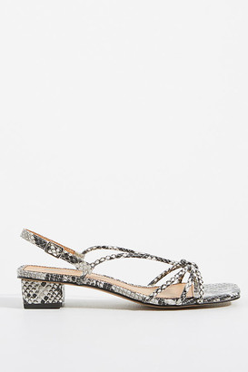 Matiko Perry Knotted Sandals By in Black Size 38