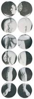 Fornasetti Adamo Set of 12 Plates