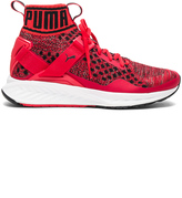 Puma Select Ignite Evoknit