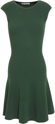 Autumn Cashmere Flared Ribbed-knit Mini Dress