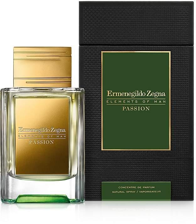 Ermenegildo Zegna Elements of Man: Passion