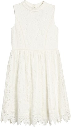 Blush by Us Angels Lace Skater Dress