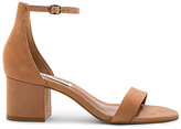 Steve Madden Irenee Heel in Tan. - size 8 (also in )