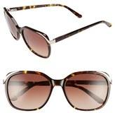 Ted Baker Women's 57Mm Oversized Sunglasses - Blue Tortoise