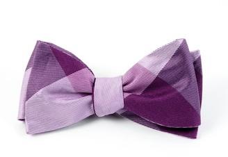 Tie Bar Bison Plaid Azalea Bow Tie