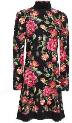 Dolce & Gabbana Velvet-trimmed Floral-print Crepe Turtleneck Dress