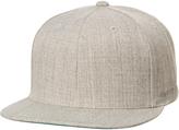 Flexfit Flex Fit The Classic Snapback Cap Grey