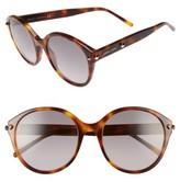 Jimmy Choo Women's 55Mm Oversized Sunglasses - Havana