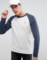 Hollister Icon Crew Neck Sweatshirt Contrast Raglan Sleeves Regular Fit In Oatmeal/Navy