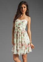 Anna Sui Cabbage Rose and Rosebud Stripe Print Crinkle Chiffon Dress