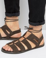 Asos Gladiator Sandals In Brown Suede With Tie Lace