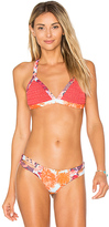 Maaji Crochet Cabana Top in Coral. - size L (also in M,S)