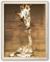"""Art.com Giraffe, First Kiss"""" Framed Art Print by Ron D'Raine"""