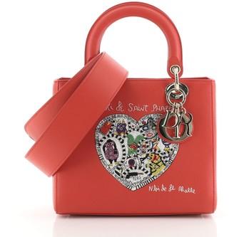 Christian Dior Lady Bag Limited Edition Niki de Saint Phalle Embroidered Leather Medium