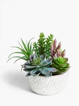 John Lewis & Partners Artificial Garden Succulent Selection