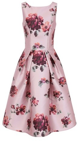 Dorothy Perkins Womens *Chi Chi London Pink Floral Print Skater Dress, Pink