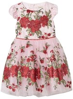 David Charles Pink Metallic Embroidered Rose Tulle Dress