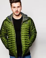 The North Face Thermoball Jacket With Hood - Green