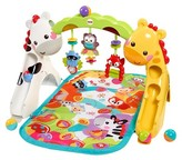 Fisher-Price Newborn-to-Toddler Activity Gym