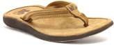 Lamo Chestnut Sunburst Leather Flip-Flop - Women