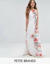 Uttam Boutique Petite Floral Placement Print Maxi Dress