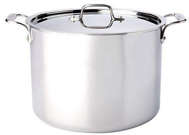 Camilla And Marc All-Clad 12 quart Stainless Steel Stockpot with Lid