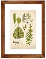 PTM Images Leaf Sheet I Wall Art