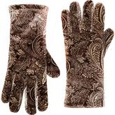 Cejon Brown & Camel Paisley Velvet Glove
