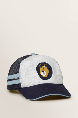 Seed Heritage Lion Cap