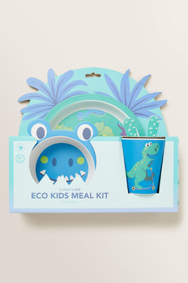 Seed Heritage Dino Eco Meal Kit