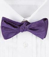 Daniel Cremieux Natte Silk Bow Tie