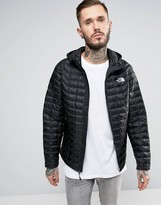 The North Face Thermoball Hooded Jacket In Black