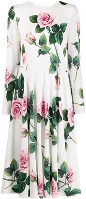 Dolce & Gabbana rose-print dress