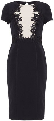 Phase Eight Phoebe Lace Bodice Dress
