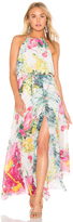 Bishop + Young Floral Maxi Dress