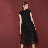 Maje Midi bonded guipure skirt