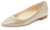 Butter Shoes Jig Pointed-Toe Flat