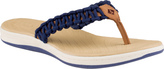 Sperry Women's Seabrook Current Thong